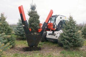присадач дървета bobcat